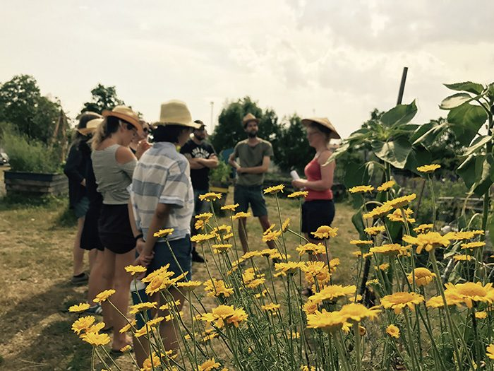 O'Pflanzt is Community Garden in Munich – People and Flowers